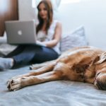Uvažujete nad home office prácou? 8 inšpirácii, ktoré vás presvedčia